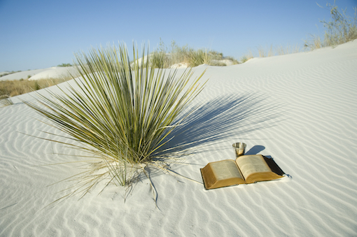 bible desert careme